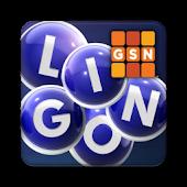 GSN Lingo