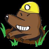 Whacky Moles