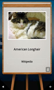 QuizTutor:Cats - screenshot thumbnail