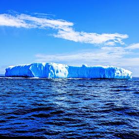 Iceberg by Geoff Gosse - Landscapes Waterscapes ( iceberg, atlantic ocean, newfoundland, conception bay, springtime )
