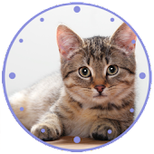 Cat clock Widget