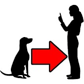 Dog Training Tips Video