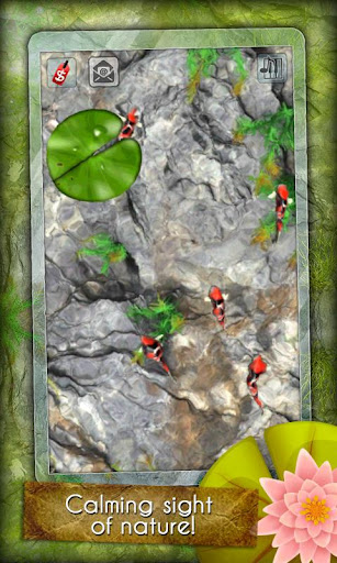 App free my koi pond android apps games android for Koi pond app