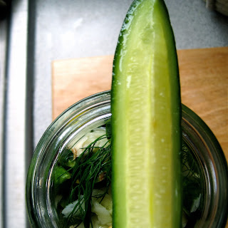 24 Hour Dill Pickles.