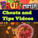 Fruit Ninja Cheat N Tip Videos icon