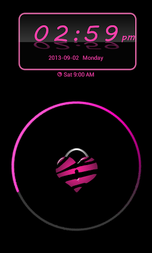 Pink Zebra Theme 4 GO Locker