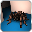 Spider Maze Tactical Action icon