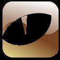 Gold Xmas theme GO launcher EX logo