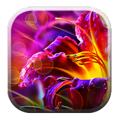 Xperia Flower Background