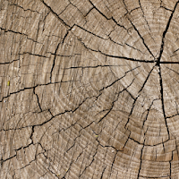 Tải Ứng dụng Knock on Wood Headman Studios cho  Android