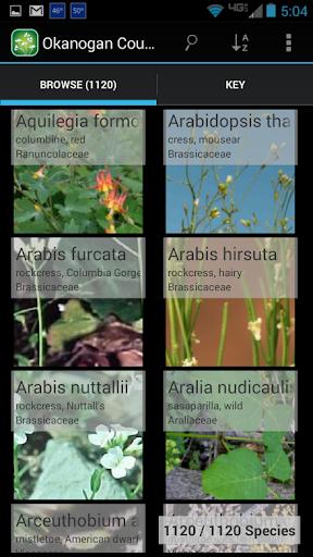 2450 Utah Wildflowers