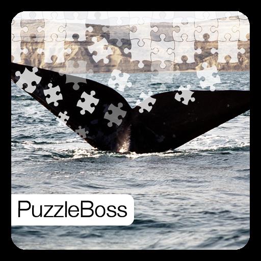 Whales Jigsaw Puzzles LOGO-APP點子