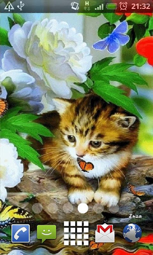 Spring Kitten Live Wallpaper