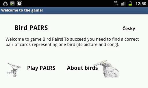 Bird Pairs