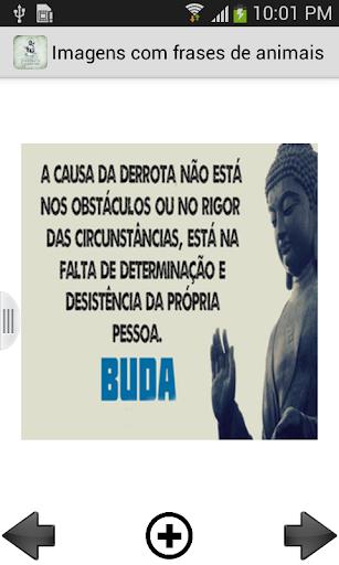 Imagens com frases de Buda