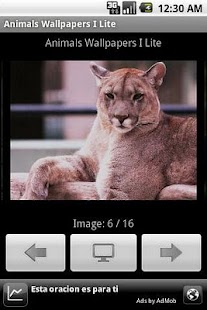 Animals Wallpapers I Lite - screenshot thumbnail