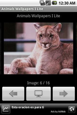Animals Wallpapers I Lite - screenshot