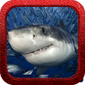 Shark Rush icon