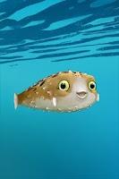 Screenshot of Blowfish - Live Wallpaper