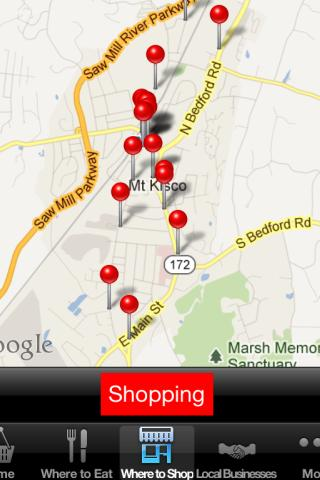 Mt. Kisco Buzz - screenshot