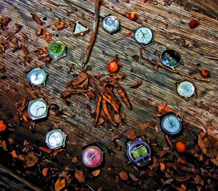 Watch Clock by Todd Yoder - Uncategorized All Uncategorized ( twigs, wheelbarrow, clockface, leaves, watches, berries, object )