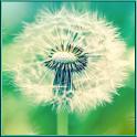 Galaxy Dandelion Lock Screen icon