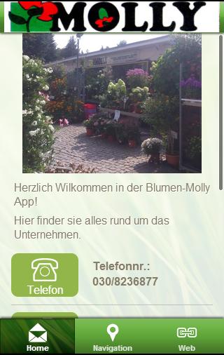 玩購物App|Blumen-Molly免費|APP試玩