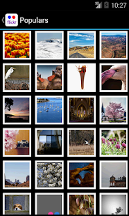 Flickr Explorer (Batch Upload) - screenshot thumbnail