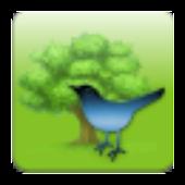 Bird Sounds & Ringtones