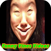 Funny Vines Videos