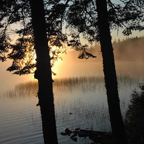 Sunrise At NH North Woods Escape by Linda Labbe - Landscapes Waterscapes ( water, dawn, camping, canoe, sunrise, escape )