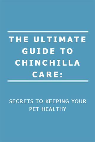 GUIDE TO CHINCHILLA CARE