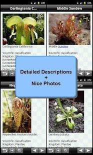Carnivorous Plants Bible