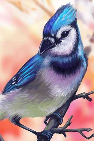 How to Draw Bird Animal