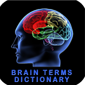 Brain Terms Dictionary