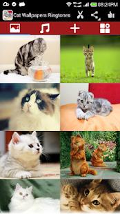 貓壁紙鈴聲