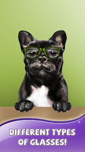 French Bulldog Live Wallpaper