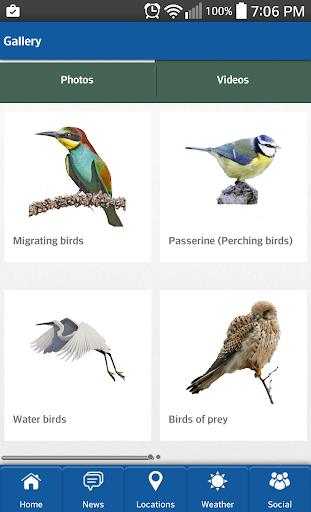 【免費娛樂App】BirdWING-APP點子