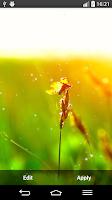 Screenshot of Green Nature Live Wallpaper