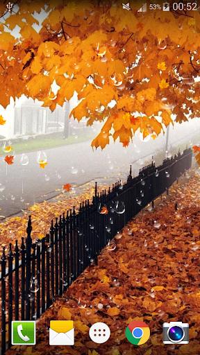 美丽浪漫的枫叶雨滴免费动态壁纸 Free