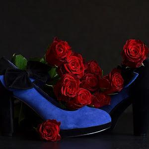 roseshoe.jpg