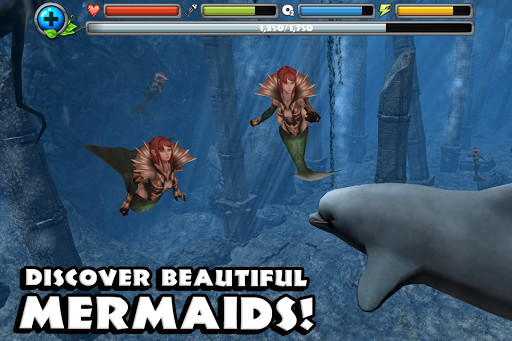 Dolphin Simulator image   5