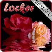 Roses Go Locker theme