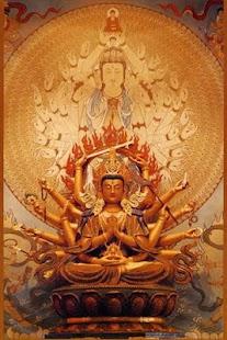 牟尼佛法流通網 Muni Buddha Net Wiki- screenshot thumbnail