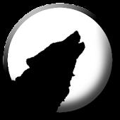 Wolfscript IDE Alpha