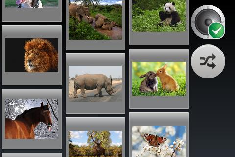 動物圖片幻燈片