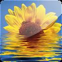 3D Sunflower II (PRO) logo