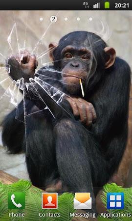 Funny Monkey Live Wallpaper 1.2.1 screenshot 322690