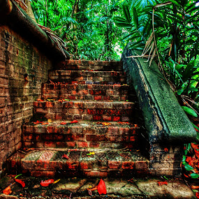 Forgotten Stairs by Shahrul A Hamid - Buildings & Architecture Decaying & Abandoned (  )