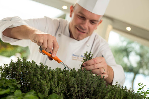 Culinary-Experiences-Crystal-Serenity-Chef-&-Herb-Garden - Crystal Serenity features the Trident Chef & Herb so food is always seasoned with the freshest herbs.